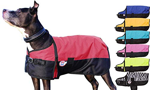 Derby Originals 600D Waterproof 150G Insulated Dog Blanket Coat with 1 Year Limited Warranty (Large, Red)